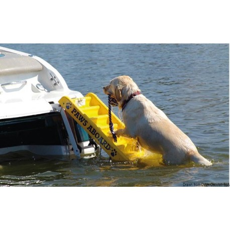 Echelle bain pour chiens